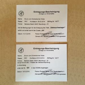 Titelvergabe Gebrauchssieger und Eintragung ins DGStB
