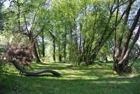Gartenausstellung in Guteneck