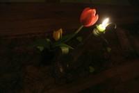 Valerie - Valera - Herzlichen Glückwunsch zum Geburtstag